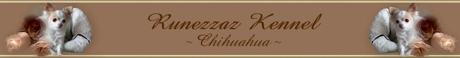 Runezzaz Blandade Blogg